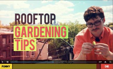 RooftopTips!